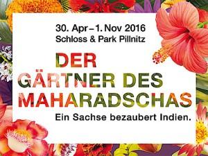 csm_der_gaertner_des_maharadschas_800_x_600_pixel_14_7e8b89e353